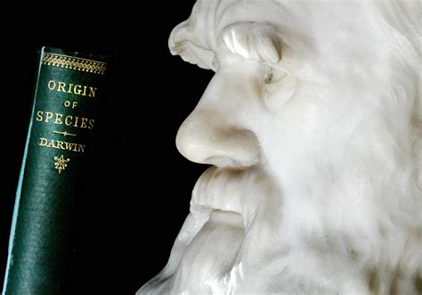 Charles Darwin Quotes, Facts: Celebrating 'Father Of