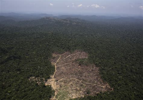 Brazil Says No to Anti-Deforestation Plans: The Difficulty