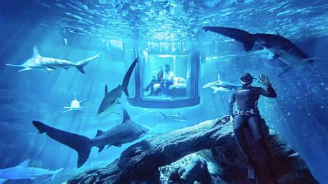 Now You Can Rent An Airbnb That Is Just An Underwater